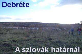 falusi turizmus - Debréte